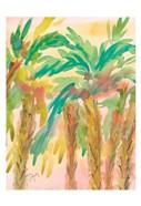 Sunset Palms 4