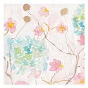 Soft Blooms I