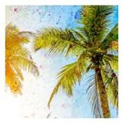 Bright Palm 2