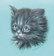 Black Kitten - 23A