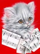 Music Cat - 12A