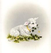 Little Lambsy Divey