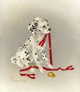 Dalmation 4- Hot Diggity Dog