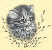 Precious Kitty
