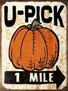 U-Pick Pumpkin