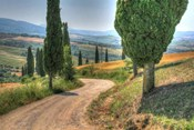 Tuscan Footpath 0392