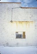 January Wall
