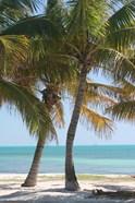 Two Palms Beach