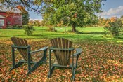 Barnyard Chairs