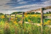 Denniston Lane Fence
