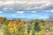 Blue Catskills And Hawk