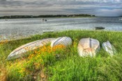 CC Boats And Bulkhead