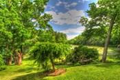 Formal Garden Trees