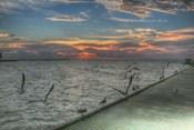 Key West Sunrise Gulls and Pier