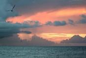 Key West Sunset IV