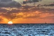 Blue Sea Gulls and Clipper