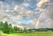 Rainbow and Heron