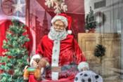 Santa Store Window