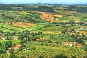 Tuscan Grand View