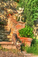 Tuscan Vertical Cat on Stairs