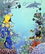 Puffer Reef