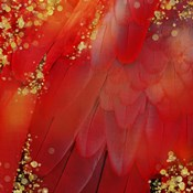 Mid-Summer Magik Red Spice