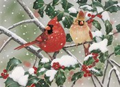 Snowy Perch - Cardinals