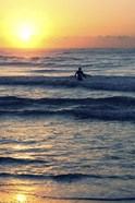 Surf In The Morning