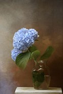 Blue Hydrangea In A Vase