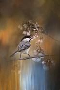 Chickadee In The Garden