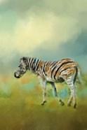 Summer Zebra 2