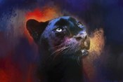 Colorful Expressions Black Leopard