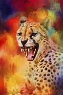 Colorful Expressions Cheetah 2