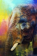 Colorful Expressions Elephant