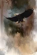 Winter Eagle 1