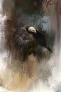 Winter Eagle 2