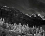 Glacier Park I