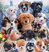 Puppy Collage