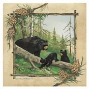 Black Bear & Cubs