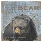 Where Does a Bear Sleep
