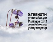 Strength Grows - Flowers in Snow Color