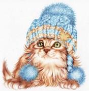 Winter Kitten