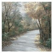Shades of Autumn Sq