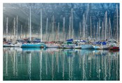 Hout Bay Harbor, Hout Bay South Africa