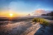 Dunes On The Pacific Coastline