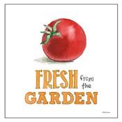 Fresh From the Garden V No Border Sq