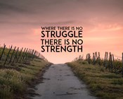 Where There Is No Struggle There Is No Strength - Color