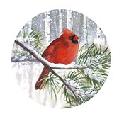 Winter Wonder Male Cardinal