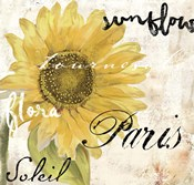 Paris Songs I