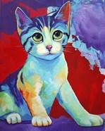 Colorful Kitten Finningan